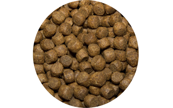 Сухой корм для щенков All Puppies 13 кг с  говядиной и овощами