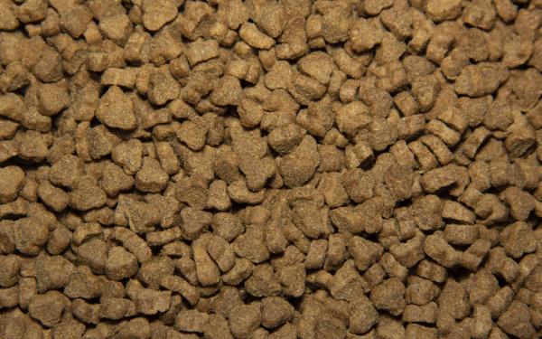 Сухой корм для кошек Tasty с говядиной 11 кг