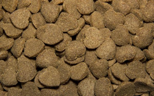 Сухой корм для собак Tasty с говядиной 15 кг