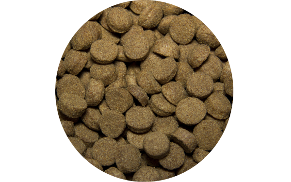 Сухой корм для собак Tasty с ягненком 15 кг